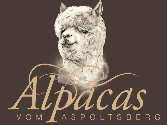 Alpacas vom Aspoltsberg in Gaspoltshofen Oberösterreich